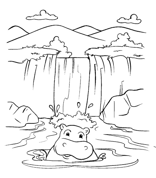 waterfall and hippopotamus coloring page for kids