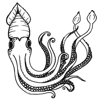 giant squid coloring page printable
