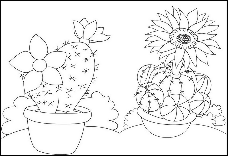 Pretty Cactus Flowering Coloring Pages for Girls