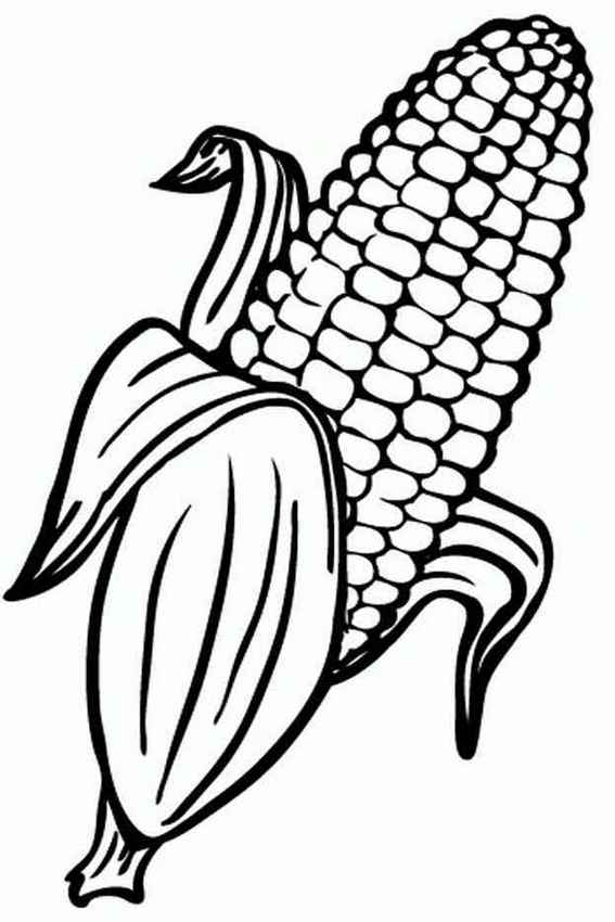 Sweet corn coloring page design