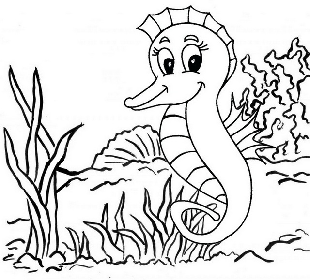 Baby Tiger Tail Seahorse Coloring Pages