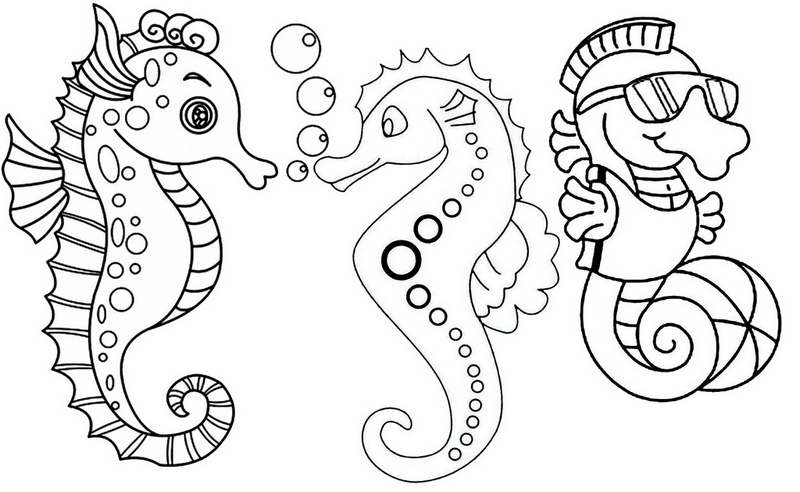 Three Fun and Cute Baby Seahorses Coloring Page