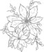 7 Beautiful Poinsettia Coloring Pages for Preschoolers