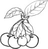 Six Fun and Cute Cherries Coloring Pages for Children