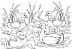 7 Fun Duck and Ducklings Coloring Pages for Children