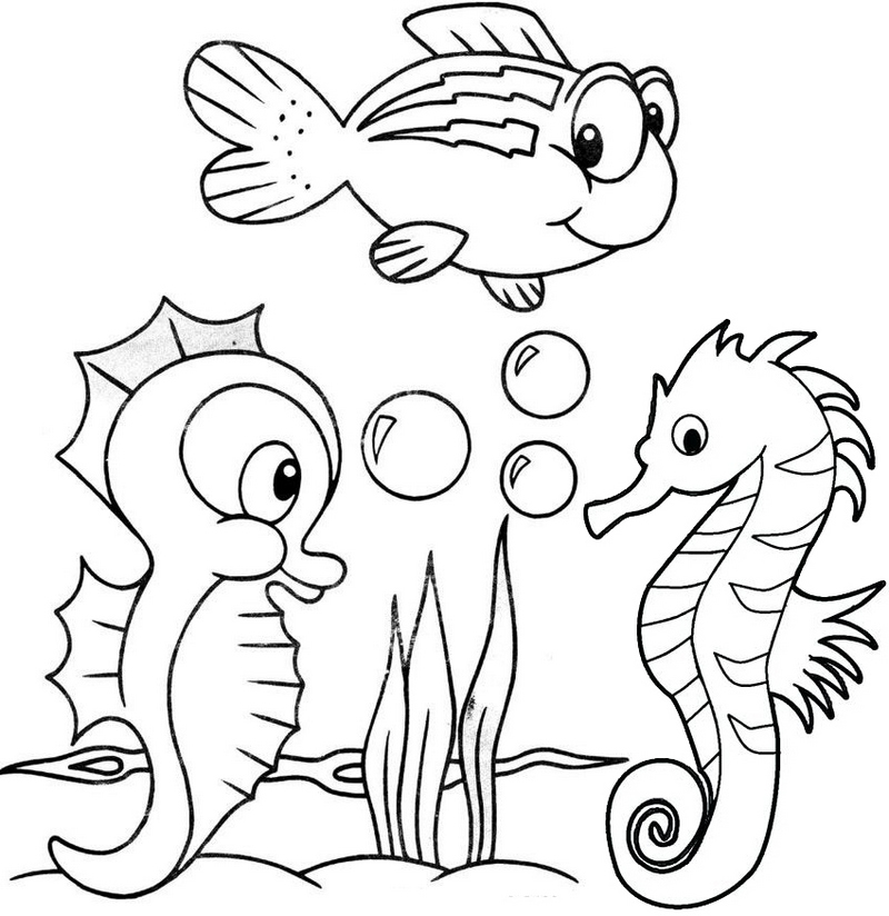 baby seahorses coloring pages - photo#39