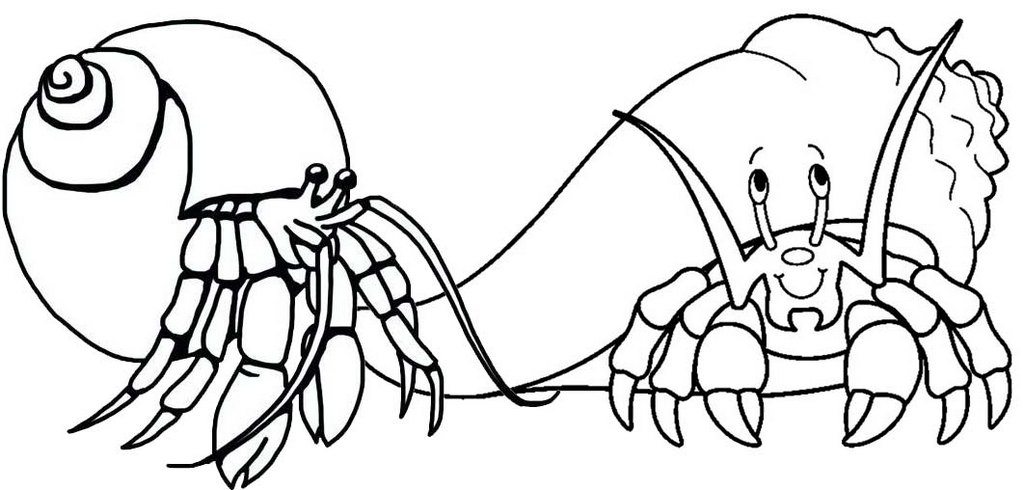 fun hermit crab coloring page for children