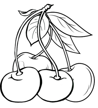 new fresh cherries coloring page