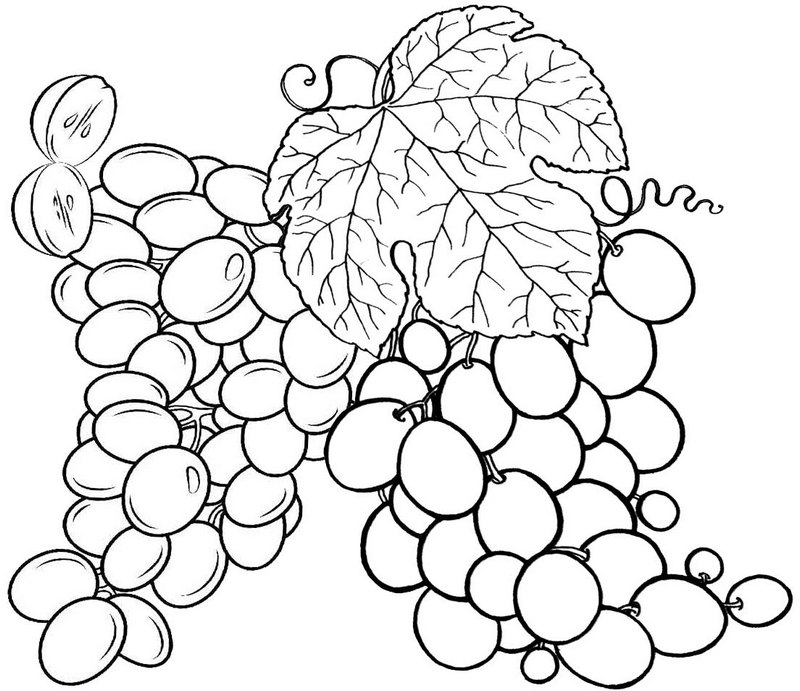 Best Grape Coloring Page