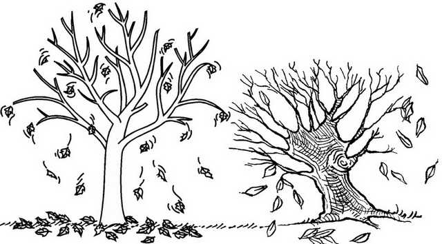 Fall Tree Autumn Coloring Page for Kids