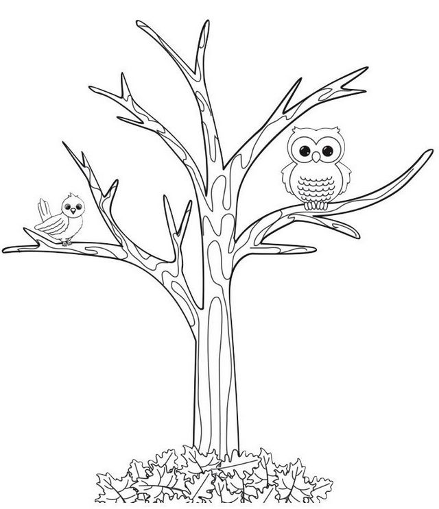 Owl perching on fall tree coloring page