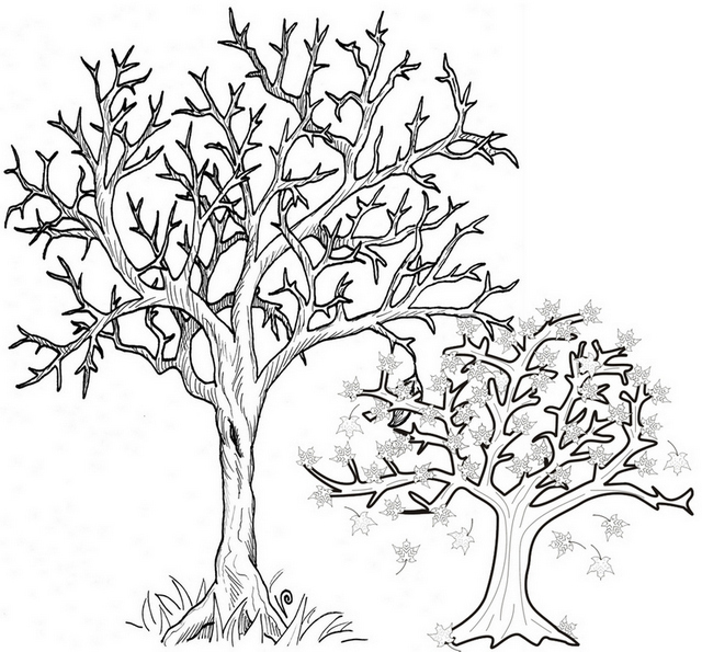 Printable Fall Tree Coloring Page trees shedding their leaves coloring sheet