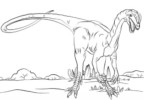 Seven Awesome Dilophosaurus Coloring Pages for Children