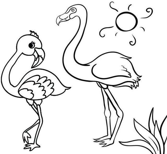 Cute Flamingo Coloring Page