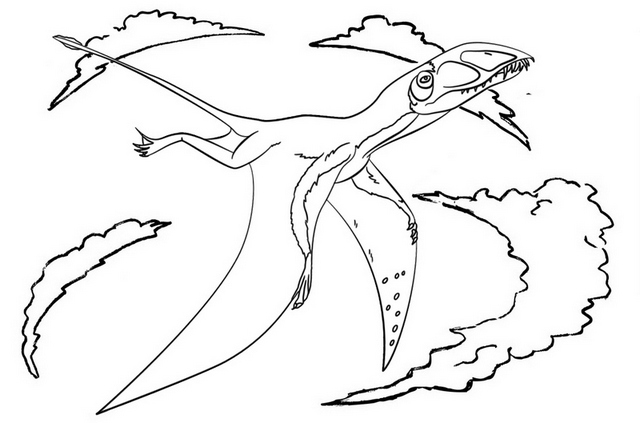 Pterodactyl Pterosaur Reptile Dino Coloring Page
