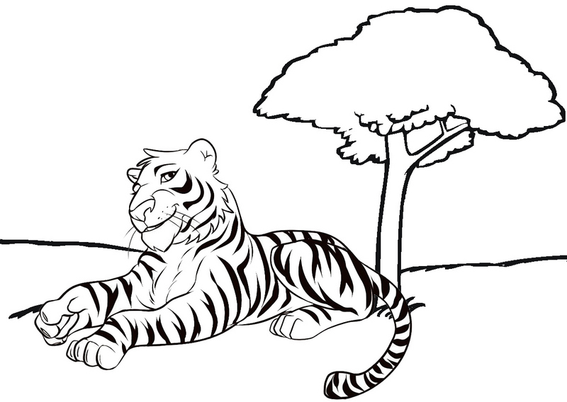 beautiful tiger cartoon coloring page