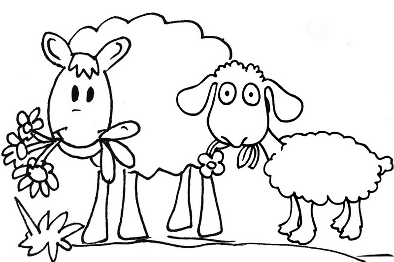 best sheep cartoon coloring pages