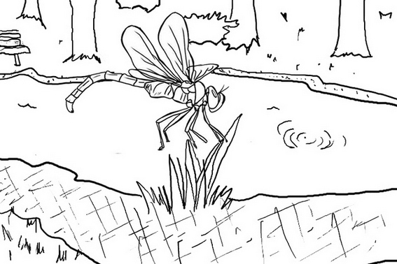 dragonfly with river scenery coloring page