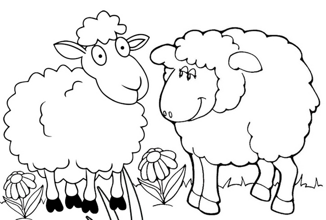 fun sheep coloring page printable
