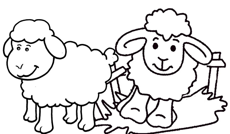 sheep farming coloring page for kids