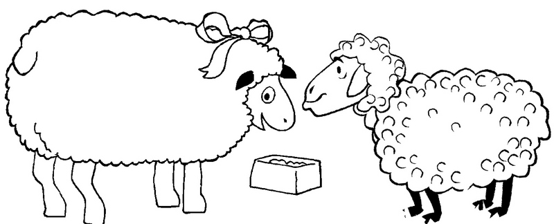 sheeps ready to eat coloring page