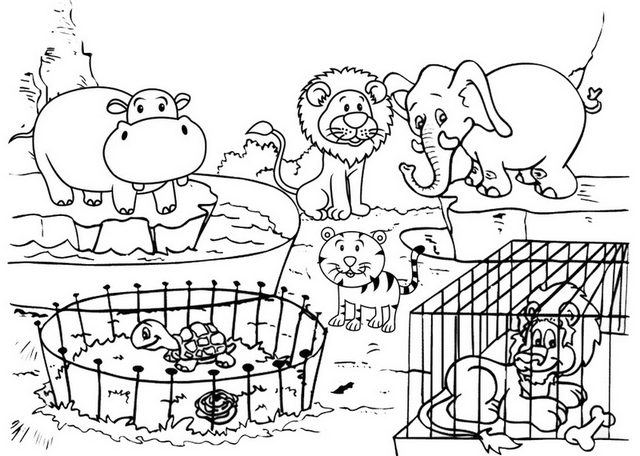 zoo animal cage set coloring page package
