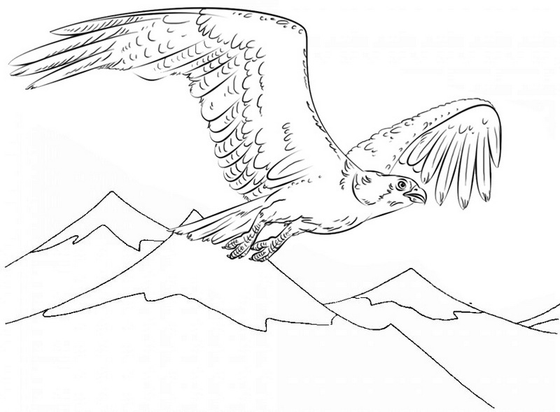 Beautiful Bald Eagle with Mountain view Coloring Page