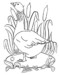 Funny Realistic and Cartoon Goose Coloring Pages for Children