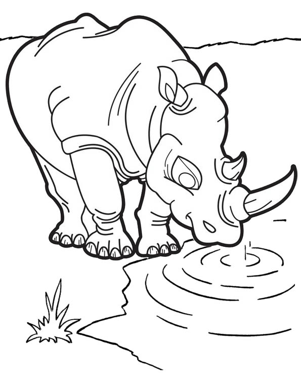 Greater Two Horned Rhino on the Water Coloring Page