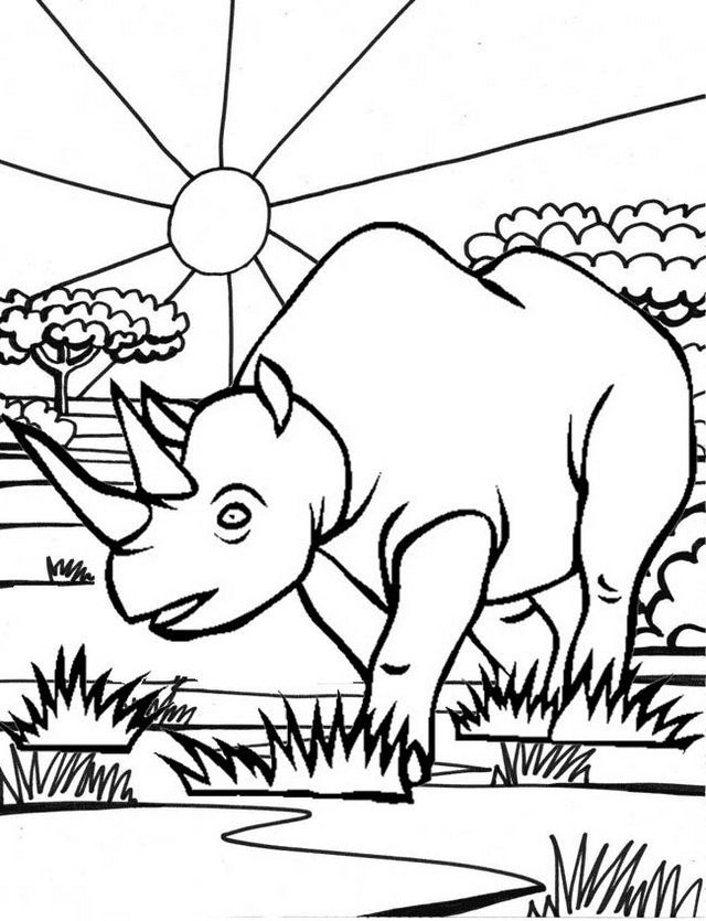 Javan Rhino Coloring Page Wonderful Indonesia