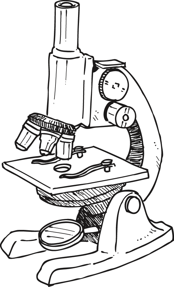 Microscope Laboratory Drawing