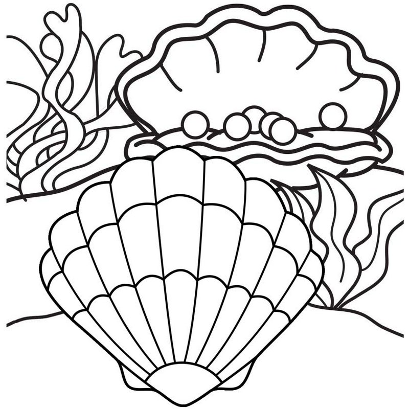 Pearl Oyster Coloring Page