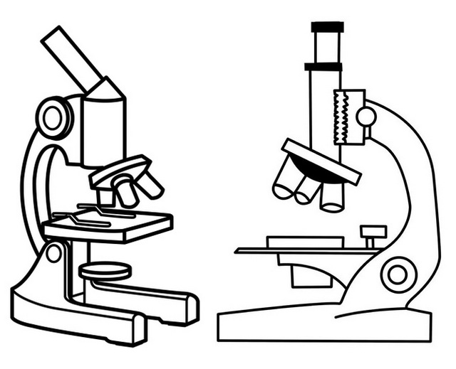 Top Microscope Drawing Page