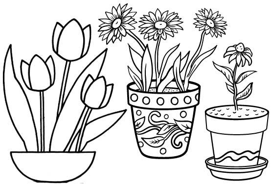 Tulip and Sunflower in Pot Coloring Page