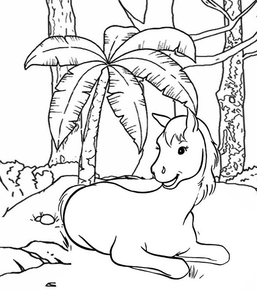 a beautiful horse sitting coloring page