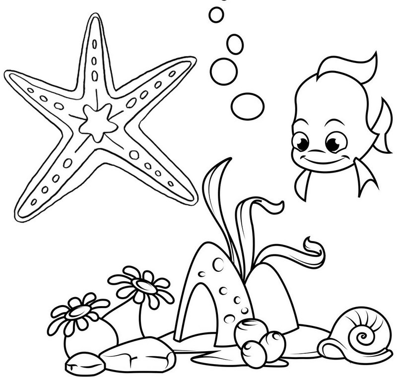 beautiful starfish undersea creature coloring page