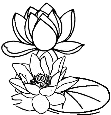 lotus flower and leaf coloring page