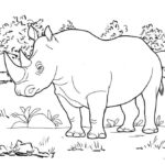 wildlife rhinoceros rhino living in the forest coloring page