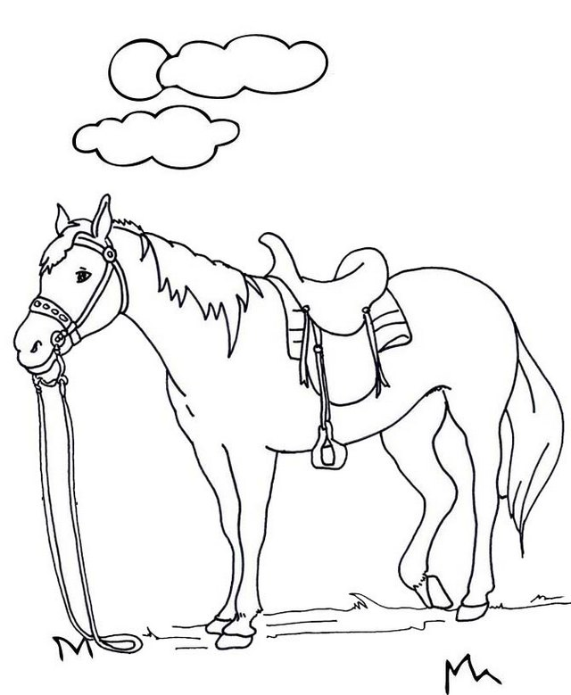 wonderful horse coloring page for kids