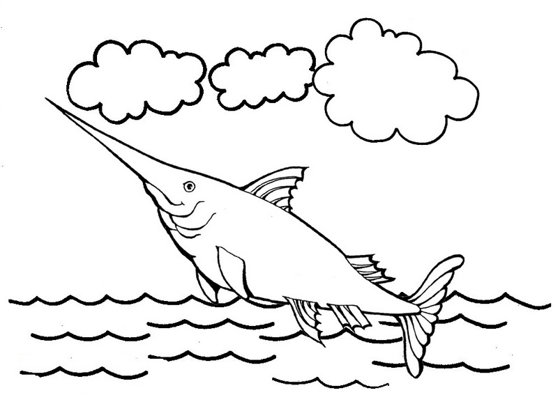 xiphias fish coloring pages
