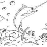 xiphias undersea coloring page