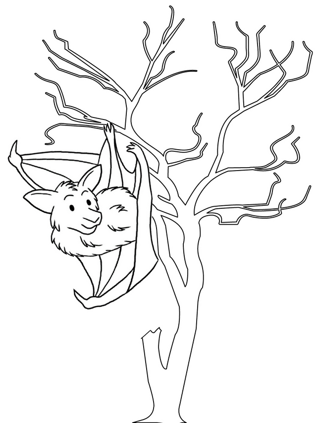 bat hang upside down in the tree coloring page