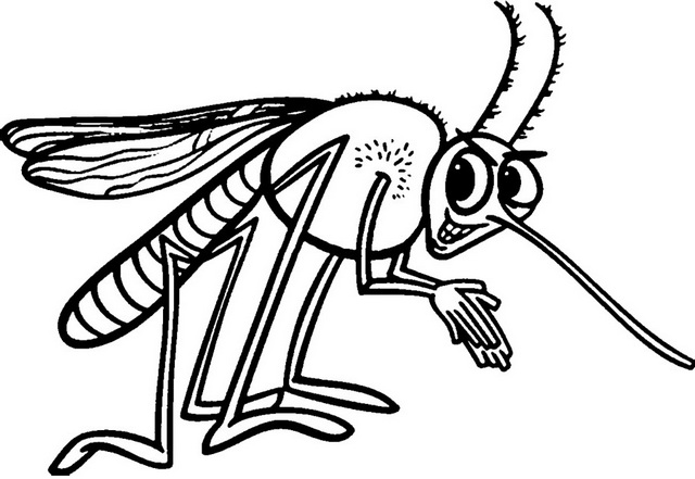 funny mosquito cartoon clipart drawing page