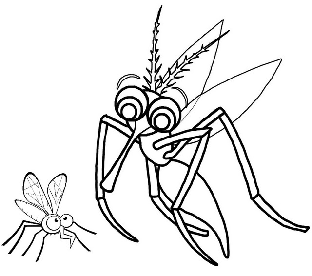 mosquito and her baby coloring page