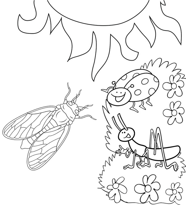 Fun Cicada and other insects coloring page