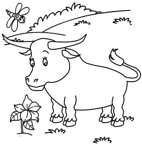 beautiful bull cartoon coloring page