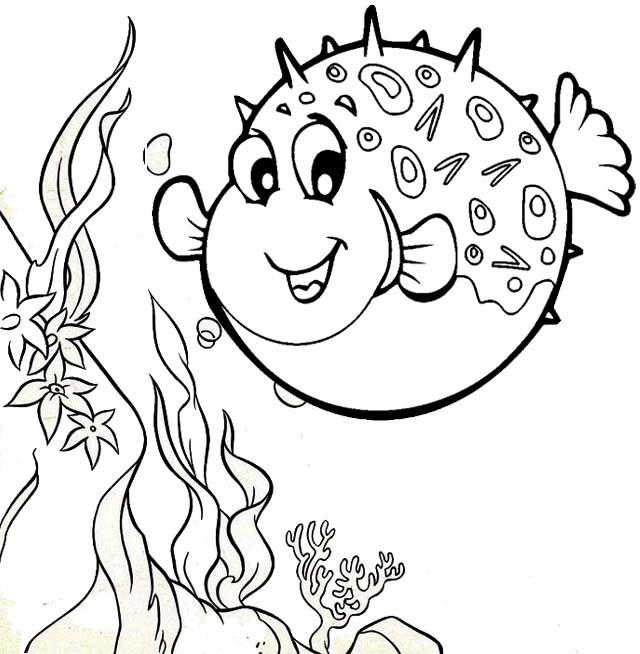 puffer fish finding nemo coloring page