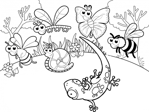 Gecko and Insects Bee Butterfly Dragonfly and Snail Coloring Page of Various Animal