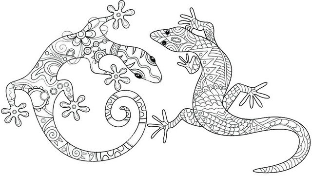 gecko zentangle coloring page