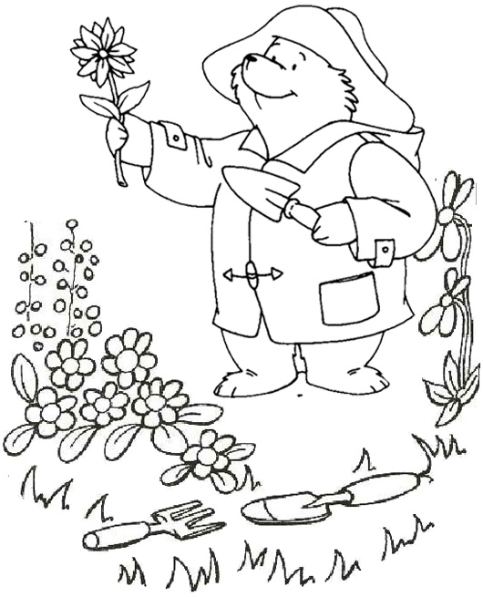 paddington gardening and planting flowers coloring page